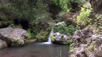 Ormanın İçindeki 'Gizli Cennet' Ziyaretçilerini Büyülüyor