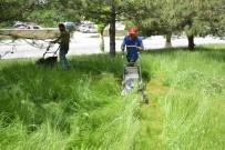 YEŞILTEPE - Boş Arazilerde Ve Parklarda Ot Temizliği