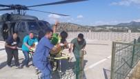Ayı Saldırısına Uğrayan Dağcı Yaralandı, Askeri Helikopter Yetişti
