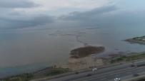 Trabzon'da Şiddetli Yağışlar Sonrası Deniz Çamura Bulandı, Derelerin Getirdiği Ağaç Parçaları İle Doldu
