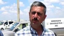 Konya'da 12 Köpek Telef Edilmiş Halde Bulundu