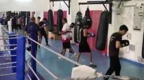 AVRUPA ŞAMPIYONASı - Genç Boksörler Avrupa Şampiyonası'na Kastamonu'da Hazırlanıyor