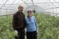 ORMAN MÜDÜRLÜĞÜ - Gümüşhane'nin Çukurovası Açıklaması İnkılap Köyü