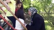 Hollanda İle Türkiye Arasında 'İyilik Köprüsü' Kurdu