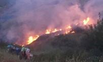 SIGARA - Nişancı'dan Orman Yangını Uyarısı