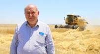 YANıLMA - Tarımda Bilinçsiz Yapılan İlaçlama Çiftçiyi Perişan Ediyor