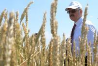 MÜDÜR YARDIMCISI - Tarımsal Alanda Geliştirilen Ürün Seçenekleri Çiftçilere Anlatıldı