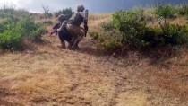 İNSANSIZ HAVA ARACI - Terör Örgütü PKK'ya Bitlis'te Darbe