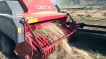 Muş'ta Sıcak Havada Çiftçilerin Zorlu Patoz Mesaisi