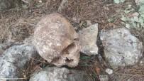 İNSAN KEMİKLERİ - Mersin'de 3 Kişiye Ait Kafatası Ve Kemik Bulundu