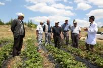 BÜYÜKŞEHİR YASASI - Tarımsal Eğitimlerle Çiftçiye Katkı Sağlanıyor