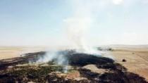Erozyon Önleme Sahasında Yangın