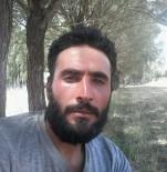 Sivas'ta Kene Ölüme Neden Oldu