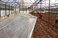 Virüse Dayalı Ve Fungusit Hastalıklarla Baş Edemeyen Çiftçiler, Seralarda Solarizasyon Uygulaması Başlattı