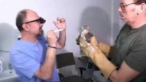 Yaralı Atmacaya Göz Tedavisi