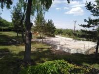 Kaman'da Çocuk Parkı Alanı Yapımında Ağaç Kesilmiyor
