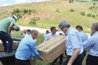 Sungurlu'da Doğaya 200 Keklik Salındı
