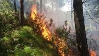 SEMERKANT - Aydos Ormanı'ndan Alevler Yükseliyor