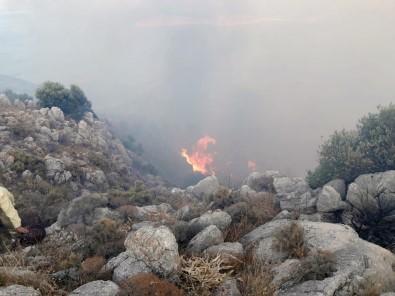 Datça'da 3 Kola Ayrılan Yangın 12 Saat Sonra Kontrol Altına Alındı