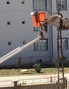 Elektrik Akımına Kapılan İşçi Yaralandı