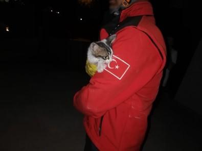 Jeneratöre Giren Kediyi İtfaiye Kurtardı