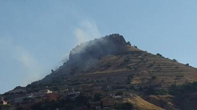 Mardin Kalesi'nde Otlar Tutuştu, İtfaiye Yangını Söndürmek İçin Seferber Oldu