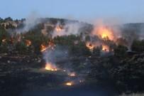 BEŞPıNAR - Orman Yangını Güçlükle Kontrol Altına Alındı