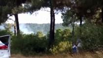 Sultanbeyli'de Ormanlık Alanda Yangın