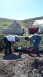 Peyjaz Alanındaki Bitkilere Solucan Gübresi İle Sölom Sıvısı Verildi