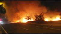 ANIZ YANGINI - Sabah Saatlerinde Korkutan Anız Yangını
