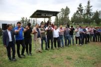 ORGANİK SEBZE - Ayvalı Köyü'nde Festival Coşkusu