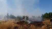 ANIZ YANGINI - Anız Yangını Odunluğu Kül Etti