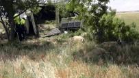 Koyun Yüklü Kamyonet Devrildi Açıklaması 2 Yaralı