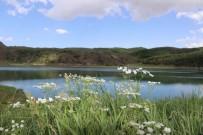 BALıKLı GÖL - Nemrut Krater Gölü'ne Ziyaretçi Akını