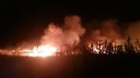 KAMYONCULAR - Göksu Deltası'nda Çıkan Yangın Kendiliğinden Söndü
