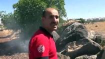 İtfaiye Aracının Ulaşamadığı Yangına Ağaç Dallarıyla Müdahale