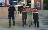 Kocaeli'de Uyuşturucu Ve Tabancalarla Yakalanan Şahıs Tutuklandı