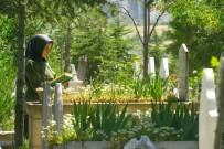 Nevşehir Dışında Yaşayan Vatandaşların Yakınlarının Mezar Bakımlarını Nevşehir Belediyesi Yapacak