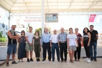 HÜDAVERDI OTAKLı - Taşı Sanata Dönüştürenler Denizli'de
