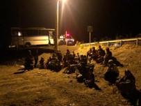 Ayvalık'ta 99 Düzensiz Göçmen Yakalandı