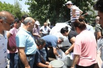 Diyarbakır'daki Göletlere 121 Bin Sazan Balığı Yavrusu Bırakıldı