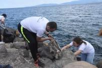 ÇEVRE TEMİZLİĞİ - Kumkaya'ya Çevre Timi Eli Değdi