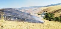 Bingöl'deki  Yangınlar Söndürüldü