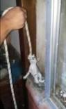 Boruya Sıkışan Yavru Kedileri İtfaiye İple Kurtardı