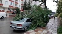 20 DAKİKA - Çorum'da Fırtına Dehşeti