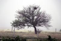 Nevşehir'de Kuvvetli Rüzgar Hayatı Olumsuz Etkiledi