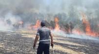 Bingöl'de 200 Dönüm Arazi Küle Döndü