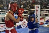 AYDIN DOĞAN - Üst Minikler Türkiye Ferdi Boks Şampiyonası Gümüşhane'de Başladı