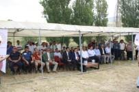 Niğde'de Buğday Tarla Günü Düzenlendi