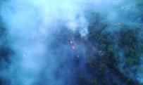 Muğla'da Ve Aydın'da 'Yıldırım' Yangınları